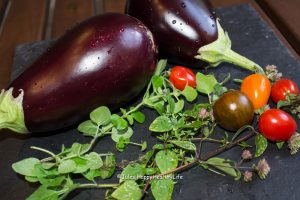 Ingredients for Eggplant Parmesan Jules HappyHealthyLife