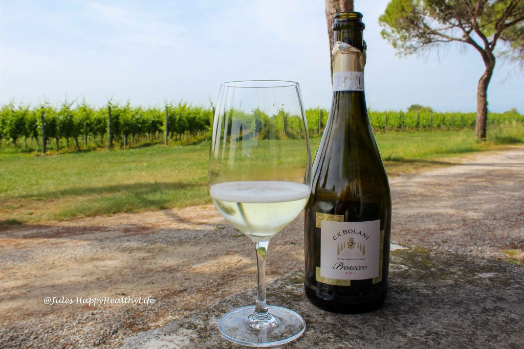 Prosecco with a view on the vineyard